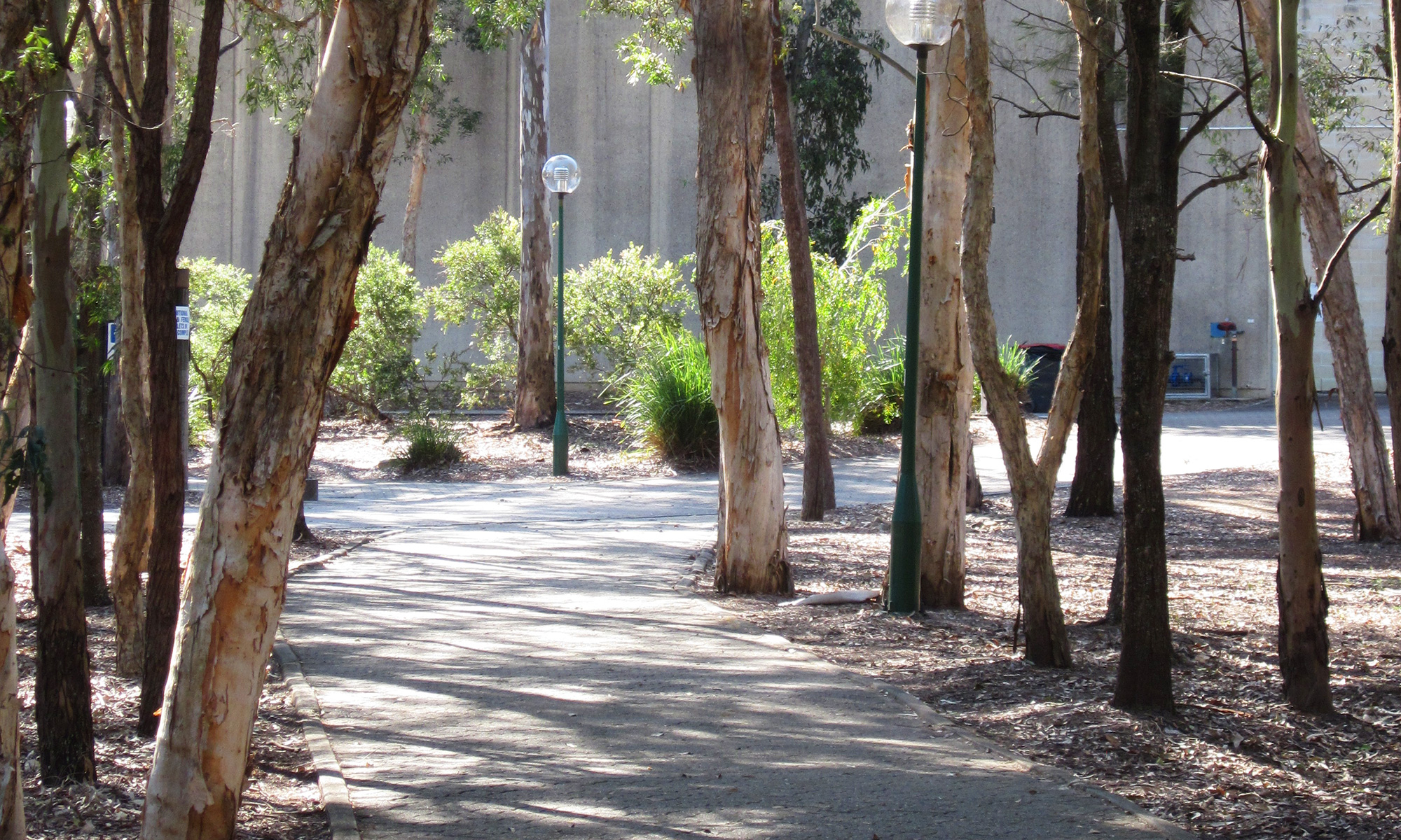 Boondall Pathway